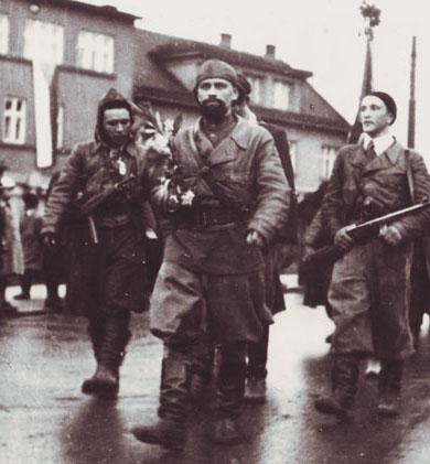 Даян Мурзин, Освободители